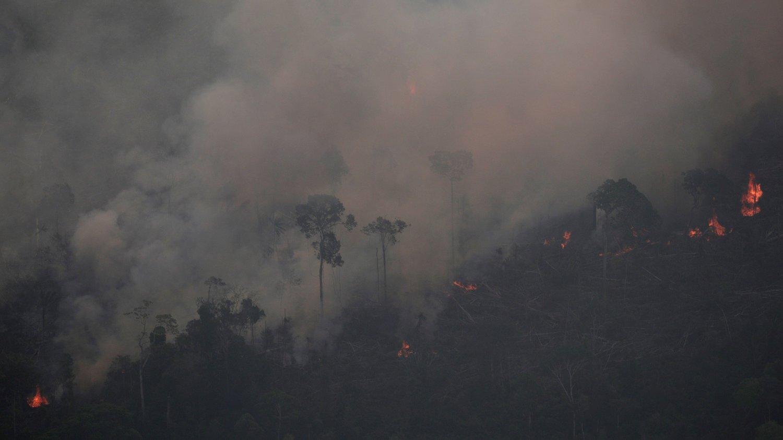 SKOGBRANN:Brasil har registrert mer enn 72.000 skogbranner hittil i år. Dette er en økning på 84 prosent sammenlignet med samme periode i fjor. Dette bildet er fra 21. august.