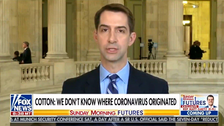 Senator Tom Cotton gjentok konspirasjonsteorien i et TV-intervju med Fox News søndag.