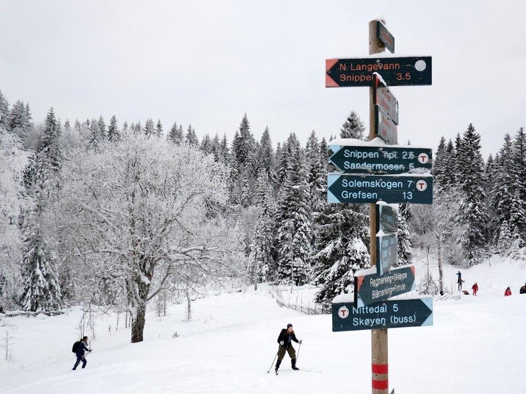 Rikelig med snø på Sinober i Lillomarka januar for nøyaktig to år siden. I år må du dra andre steder for å finne godt skiføre.
