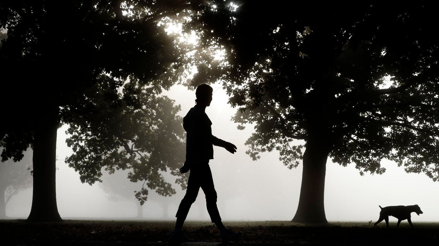 Virus Outbreak New Zealand A woman walks her dog through Hagley Park in Christchurch, New Zealand, Thursday, March 26, 2020. New Zealand has declared a state of emergency as the unprecedented 28 day day lockdown began in a bid to stop the spread of the coronavirus. The new coronavirus causes mild or moderate symptoms for most people, but for some, especially older adults and people with existing health problems, it can cause more severe illness or death.