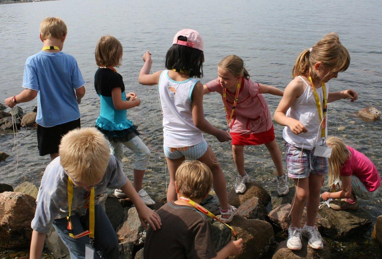 DAGER MED AKTIVITET: Det er tydelig mer enn late dager i solen Oslo-elevene ønsker seg denne sommerferien.