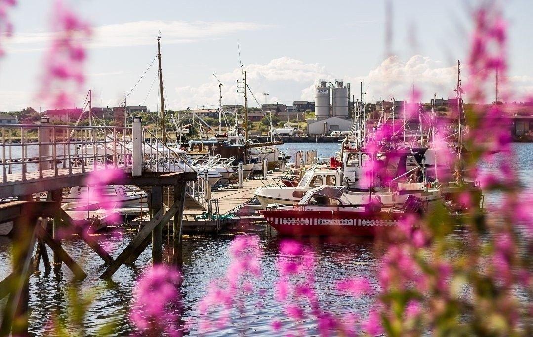 I Vadsø tirsdag var det sol og sommer og noe som mest av alt minner om sørlandsidyll.