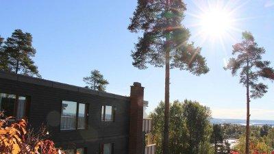 TRÆR SKAPER SPLID: Siden 2007 har et boligsameiet og en nabo på Holmenkollen, kranglet om trær som tar utsikten.