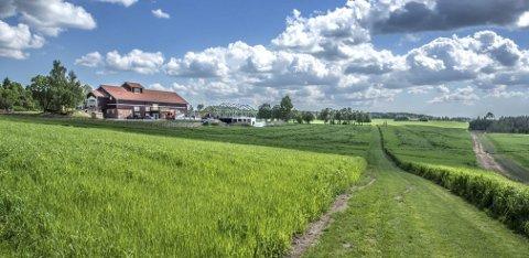 GLENNE GÅRD: Eieren av Glenne gård vil ha motorveien lengst unna bebyggelsen og løpebanen, som er leid bort til nabogården Nordli gård. Glennetjern ligger i skogholtet til høyre på bildet.