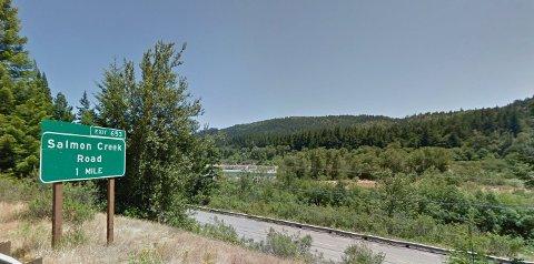 KLIMAKVOTER FRA SKOG: Statkraft har kjøpt et betydelig antall klimakvoter knyttet til karbonlagring i skoger i blant annet Salmon Creek i California.