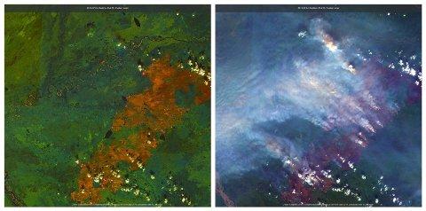 DRAMATISKE BILDER: Mens Europa svetter i hetebølgen, er også nordområdene rammet av tørke og høye temperaturer. Satelittbildene fra Sentinel 2-satellitten tatt onsdag viser et skogbrannnrammet område nordvest for Fairbanks i Alaska.