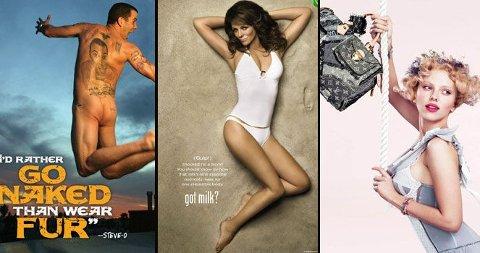 SELGER ALT: Steve-O kler seg mer enn gjerne naken - også for pelsmotstanderne PETA. Elizabeth Hurley er for melk og Scarlett Johansson for vesker.