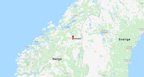 SKUTT: En ulv ble søndag skutt i Haltdalen i Trøndelag.