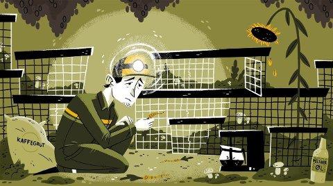 NOAH mener norske pelsdyrbønder kan begynne å dyrke sopp ut av kaffegrut. Tegning av Fredrik Edén.