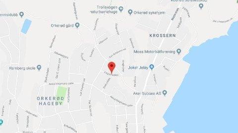 DØD I FLERE MÅNEDER: I Jeløy i Østfold fant politiet en mann som trolig har ligget død siden romjulen 2018.