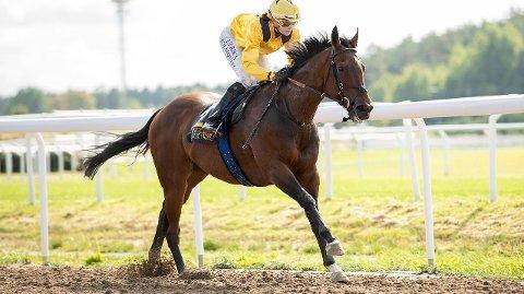 Mogsy imponerte stort i seiersløpet sist og blir vår DD-banker på Bro Park onsdag. Foto: Svensk galopp