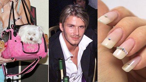 HARRY: Fransk manikyr, Swarovski krystaller, bakoversleik, åpen skjorte med kjede à la Beckham 1999 og rosa hundeveske er superharry.