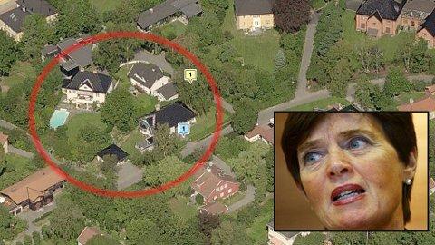 Politidirektør Ingelin Killengreen og ektemannen John har kranglet med sine naboer om et gedigent eiketre.