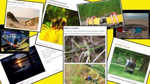 Det har kommet inn mange flotte sommerbilder i Blogglistens bildekonkurranse.