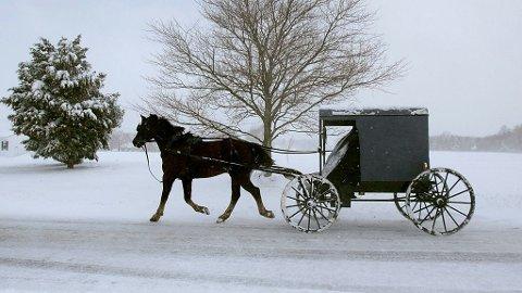 ILLUSTRASJON: Etter alt å dømme er personene i denne vognen aldeles edru.