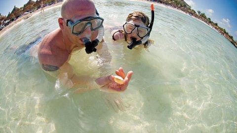 Dykking eller snorkling er spennende og det er mye å oppleve.