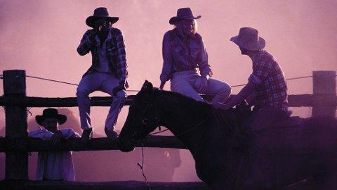 I Charters Towers eller Cairns kan du prøve deg som cowboy.
