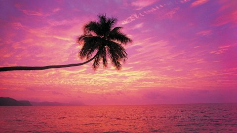 Turtle Island på Fiji er den optimale ferieøya for den romantisk anlagte.