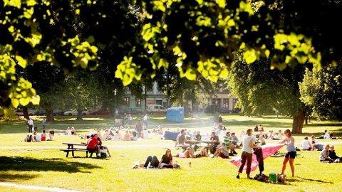 SOMMER: Østlendingene kan vente seg grilltemperaturer de nærmeste dagene. Her fra Sofienberparken i Oslo.