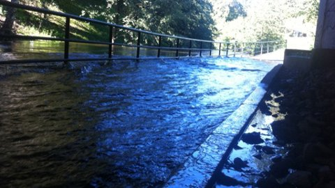 HØY VANNFØRING: For tre dager siden sto gangveier langs Akerselva under vann.