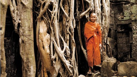 Kjemperøtter holder tempelruinene i Ta Phrom fast som i en skrustikke.
