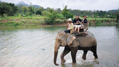 Den mektige Mekong-elven er én av verdens største elver og har et tilfangsområde på hele 795.000 kvadratkilometer.