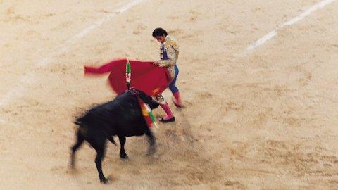 Det kan se svært brutalt ut med tyrefekting i Spania.