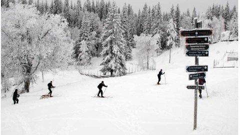 SINOBER, NITTEDAL 20090201: Hvitt, vakkert og ypperlig skiføre ved Sinober i Lillomarka. Foto: Paul Kleiven / SCANPIX