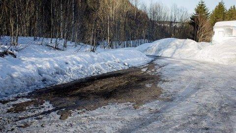 Snøen er smeltet på stedet der en utbrent bil med et lik ble funnet på en parkeringsplass ved et skogholdt på Tranby i Lier. Torsdag ettermiddag ble en 51 år gammel kvinne er siktet for drapet på ektemannen (57). Mannen ble funnet død i konas utbrente kabriolet.