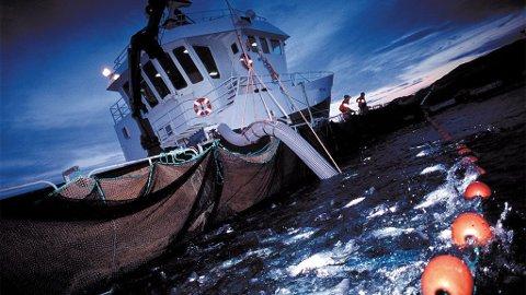 Brønnbåt hos Marine Harvest