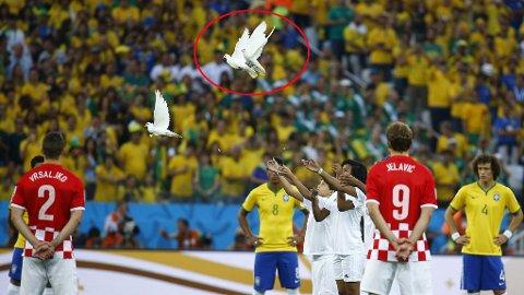 - TO DØDE: To av de tre duene som ble sluppet fri like før avspark av VMs åpningskamp døde like etterpå.