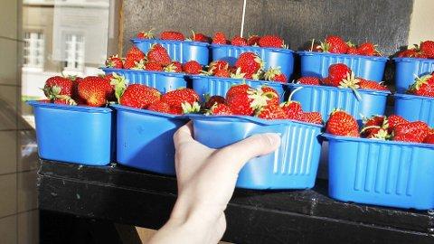 SLUTT: Neste uke kan det være slutt på jordbærsesongen rundt Oslofjorden.