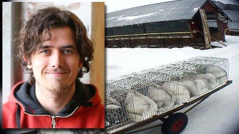 PELS: Bjarte M. Tveit er daglig leder i Piraya Film som har laget dokumentaren Pels om den norske pelsdyrnæringen.