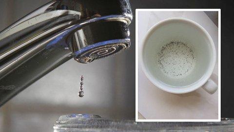 PARTIKLER: Slike partikler dukket opp i drikkevannet hos flere familier på Røa i Oslo. Vann- og avløpsetaten i Oslo kommune forklarer fenomenet med trykkfall i ledningsnettet.
