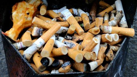 MILJØSVIN: Sigarettsneiper er svært farlige for miljøet, ifølge en ny rapport.