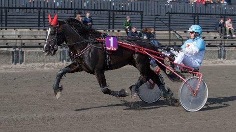Moe Svarten blir nok en gang hardt betrodd. Vinner han i kveld? Foto: Anders Kongsrud/www.hesteguiden.com.