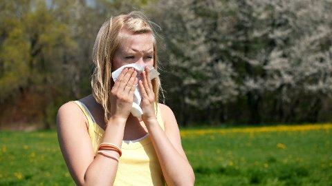 GRESS ER FIENDEN: For pollenallergikere kan gress skape mye ubehag om sommeren.