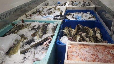 MYTE OM FISK PÅ MANDAG: At spisesteder må holde mandagsstengt fordi det ikke er fiskere ute i helgen, later til å være en myte.