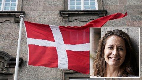 VIL KREVE ERFARING: Tine Thygesen ønsker at det skal stilles krav om minst syv års fulltids arbeidserfaring utenfor politikken, for at du kan velges inn til det danske Folketinget.