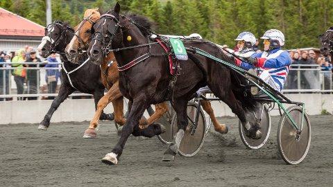 Storsjarmøren og Ove A. Lindqvist vinner her et løp i Harstad. Fredag kommer dem ut i Boden. Foto: Hesteguiden.com.