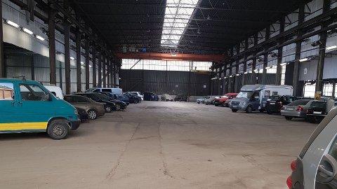 TAUET INN: Her er bilene som før helga var tauet inn til Bymiljøetatens inntauingstomt på Ulven i Oslo. 256 biler står nå lagret på tomta.