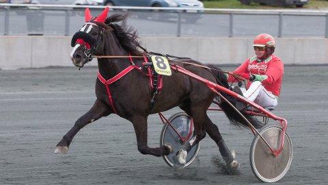 Tusse Storm har god vinnersjanse i den tredje avdelingen. Foto: Anders Kongsrud/www.hesteguiden.com.