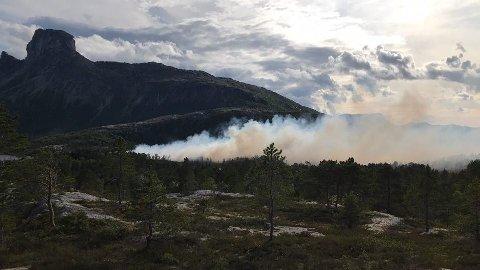 Det er brutt ut skogbrann ved Steigtindvatnet i Nordland.