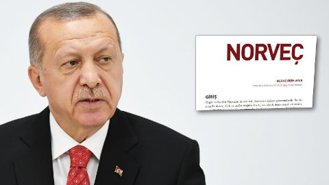 Den tyrkiske tenketanken SETA har utarbeidet en rapport om PKKs aktiviteter, og vier et helt kapittel på over 30 sider til Norge og individer bosatt i Norge. SETA anses å være en regimevennlig tenketank med nære forbindelser til regjeringsmakten, her representert ved president Recep Tayyip Erdogan.