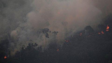 TI MILLIONER: Storbritannia skal gi 10 millioner pund til å reparere skadene på regnskogen i Amazonas. G7 finansierer et brannfly til slukkingsarbeidet i regnskogen.