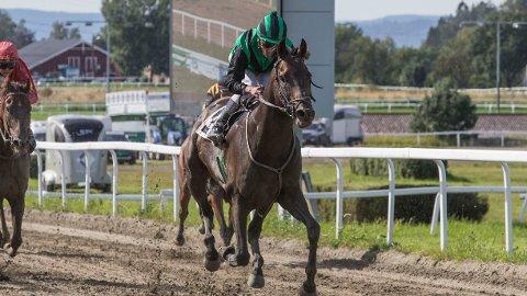 Mestre dos Magos jakter sin tredje strake seier sammen med Carlos Lopez i V65-3 på Øvrevoll i kveld. Foto: Morten Skifjeld/Hesteguiden.com