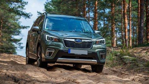 Subaru Forester kommer nå i helt ny utgave, som hybrid. Den blir viktig for å snu en negativ utvikling for merket i Norge.