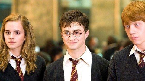 Vi har samlet 10 julegaver til den som virkelig elsker Harry Potter