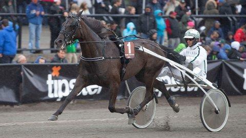 Velkjente Slide So Easy og Flemming Jensen er den ene av Nettavisens to V75-bankere på Charlottenlund søndag. Her ser vi ekvipasjen under Oslo Grand Prix på Bjerke i juni. Foto: Anders Kongsrud/www.hesteguiden.com.