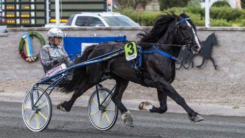 Ulf Ohlsson er aktuell i dagens V4-omgang. Foto Morten Skifjeld/Hesteguiden.com